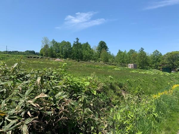 虻田郡ニセコ町字福井・土地 土地