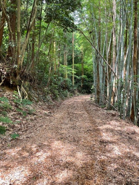 糸島市高上字深坂土地の前面道路含む現地写真画像